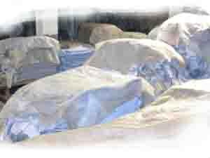 Comprar Cuero vacuno altiplano wet blue
