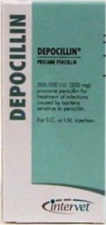 Comprar DEPOCILLIN 250 ml