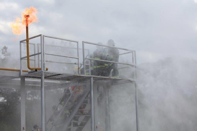 Comprar Curso en control de incendios