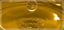 Comprar Aceite Crudo de Soya