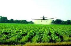 Insecticida Vendaval - Clorpi 480