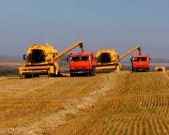 Maquinas cosechadoras