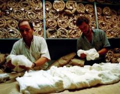 Fibras de algodón