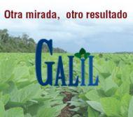 Galyl