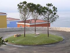 Riego Municipal
