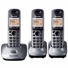 Telefono inalambrico Panasonic KX-TG2513 Dect