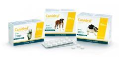 CANIDRYL 100 mg 1 comprimido
