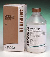 AMFIPEN LA 80 ml