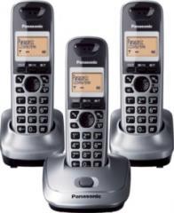 Panasonic KX-TG2513SPM
