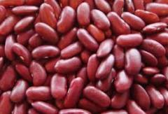 Frijol Rojo