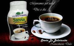 Stevia La Bolivianita