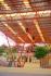 Construcciones metalicas : COLISEOS