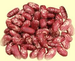 Frijol Rojo Oriental