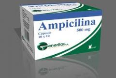 Ampicilina 500 mg
