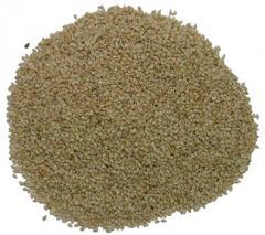 Washed Sesame Seed