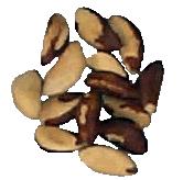 Nuez Brasilera de Primera Calidad tipo Medium