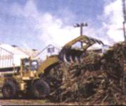 Equipo para la Industria Azucarera