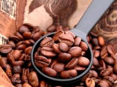 Organic and Conventional Cofee (Coffea Arabica)