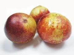 Camu Camu Fruta Seca Entera