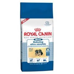 Royal Canin MAXI babydog